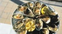 Regional oysters in Sète or Gruissan